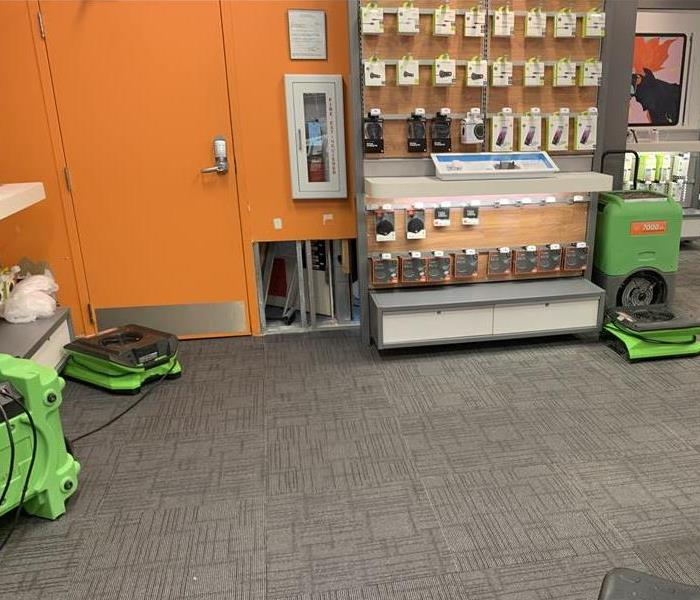 Green air movers on a grey carpet.